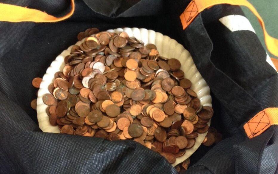 1131 pièces de centimes d'euros ont été découvertes par un bûcheron dans une branche.