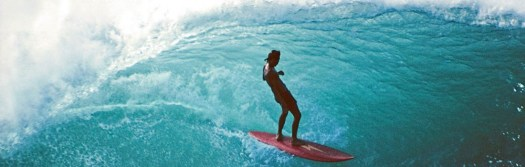 cropped-Surfari.jpg
