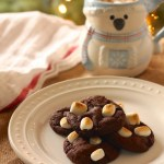 Vegan Hot Cocoa Crinkle Cookies