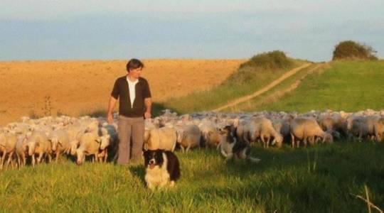 Rendez-vous le 19 août pour découvrir la ferme d'Alcas