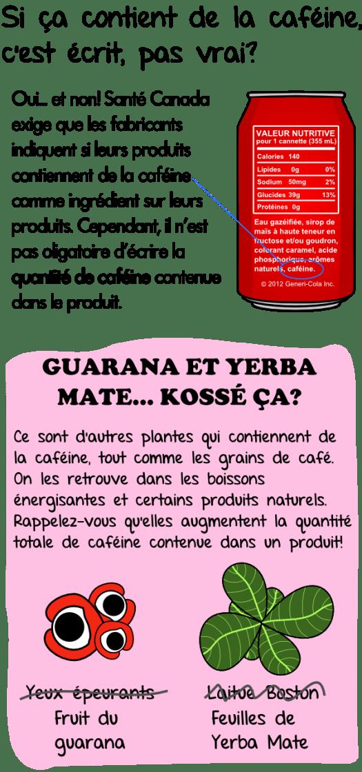 Guarana et yerba maté , canette de cola et caféine