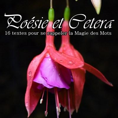 Poésie et cetera, recueil publié