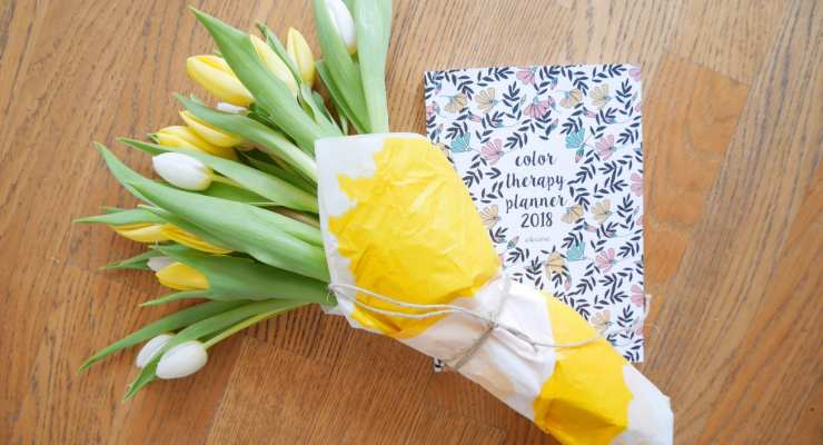 Tulipani- primavera - LePlume