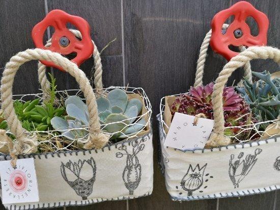 fiori nella rete borse - novità sulle piante - LePlume
