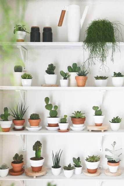 bianco e cotto Indoor garden - Le Plume