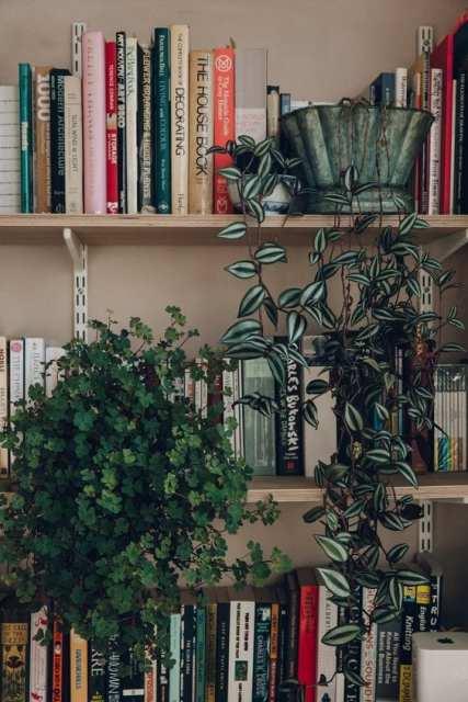 pendenti2 Indoor garden - Le Plume