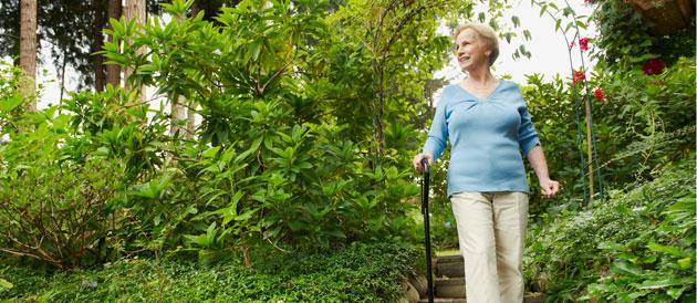 La sclérose en plaques plus active au printemps et en été