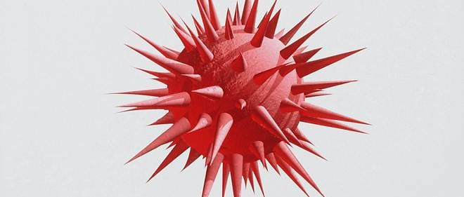Un virus qui ne s'est pas manifesté depuis douze ans...