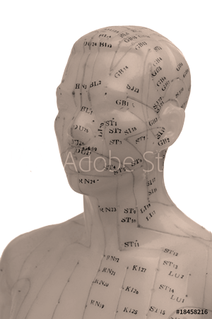 le quai namaste salon de coiffure artisan coiffeur coloration vegetale soins energetiques coupe energetique meridiens buste temporaire2 - Galerie & Avis