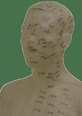 le quai namaste salon de coiffure artisan coiffeur coloration vegetale soins energetiques coupe energetique meridiens buste 01 - La coupe énergétique
