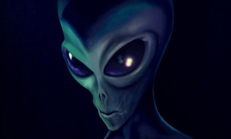 L'Espérance des Petits Gris 114-extraterrestre-petit-gris