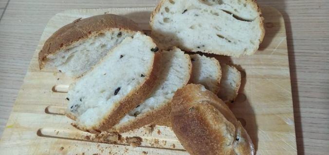 panel alle olive a lievitazione naturale