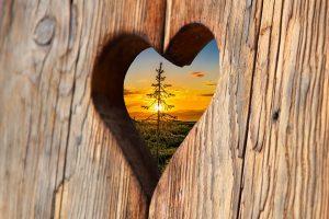 heart-2041866_960_720-300x200 Blog Friends