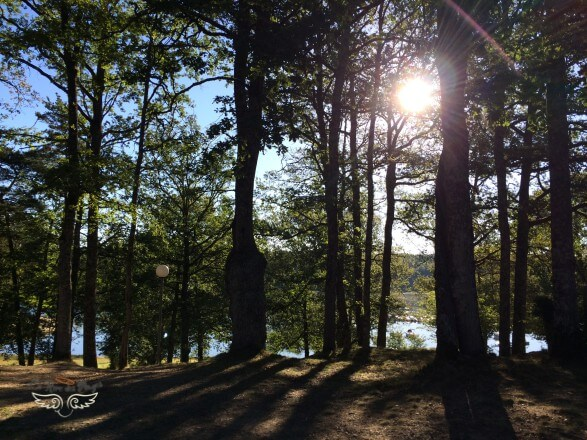 lac saint etienne cantales