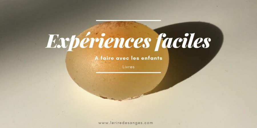 expererience scientifique facile