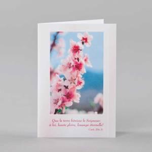 carte notes - éveil printanier 3 - fleurs de cerisier