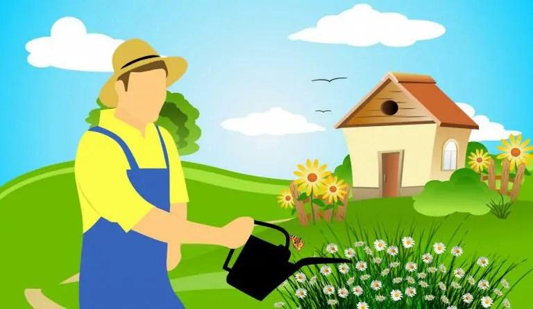 meilleurs outils de jardin pas cher