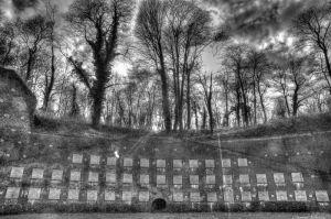 le mur des fusilles à Arras