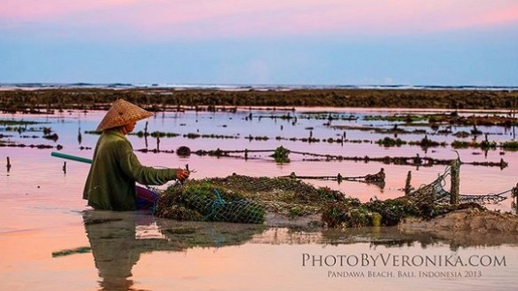 Bali plage : la péninsule, Jimbaran, Bukit, Nusa Dua. Pandawa by Veronika