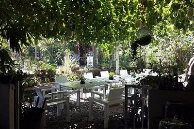 Bons plans à Bali : le warung, brasserie façon asiatique. Neuf warung