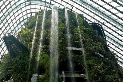 Dernier jour à Singapour : de découvertes en amitié. Cloud forest