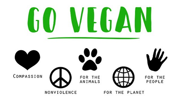 3 restos 3 blogs 3 coups de coeur Go vegan