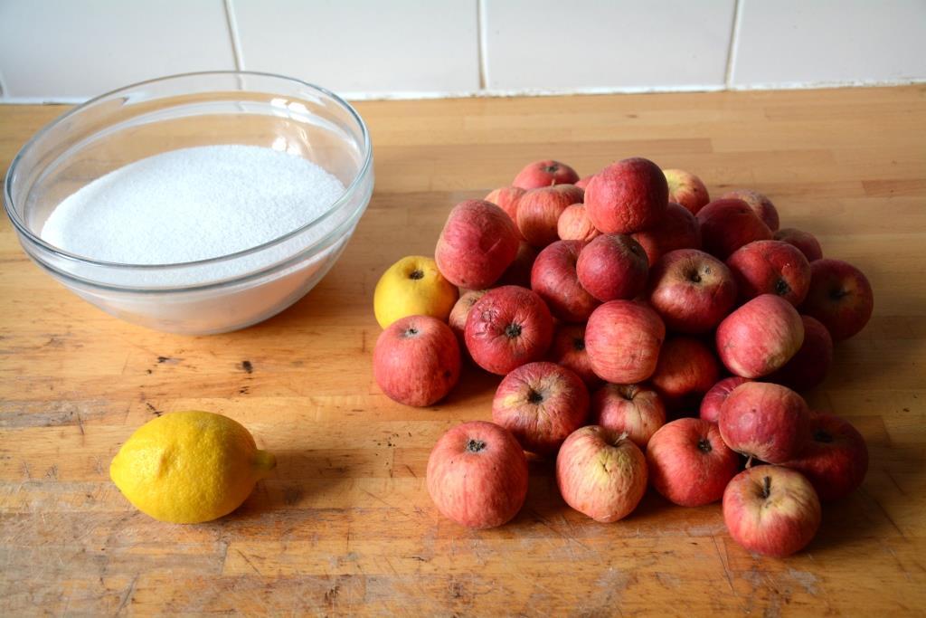 1. ingrédients gelée de pommes
