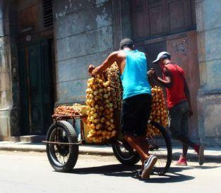 Voyage à Cuba du blog de Julia
