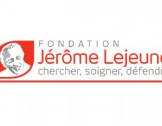 Recherche sur l'embryon : double victoire de la Fondation Lejeune contre deux décisions de l'Agence de la biomédecine