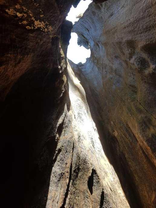 Sequoia national park - USA 5
