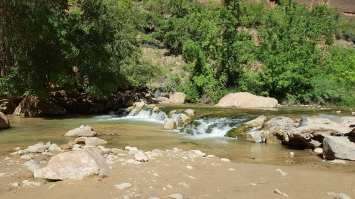 Rivière à Zion national Park