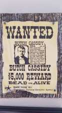 wanted Butch Cassidy