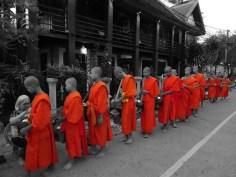 tak bat dans les rues de Luang Prabang - Laos