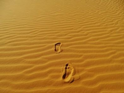 Dunes de sable à Mui Ne - Vietnam
