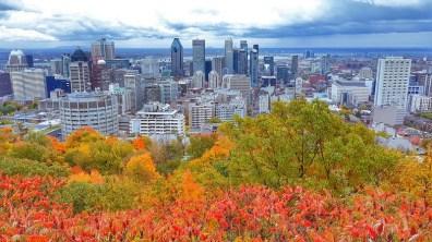 Vue depuis le parc du mont Royal - Montréal - Canada