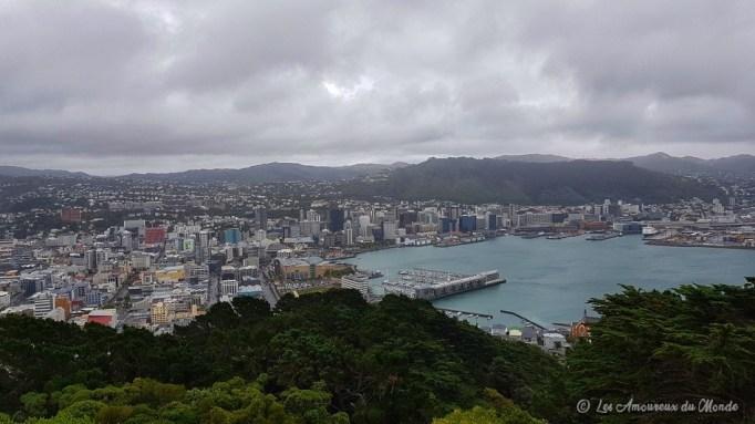 Vue sur Wellington - Nouvelle-Zélande
