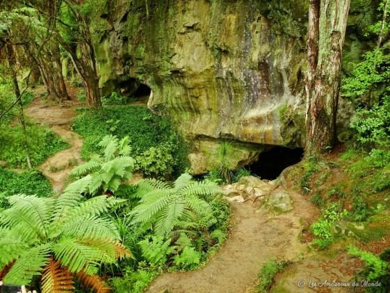 Entrée de waipu caves Nouvelle-Zélande