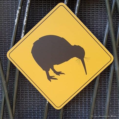 Kiwi en Nouvelle-Zélande au zoo de Auckland