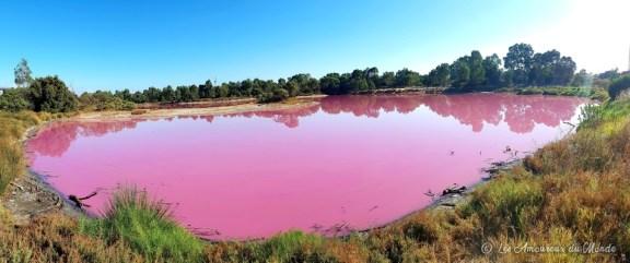 Lac rose à Melbourne - Australie