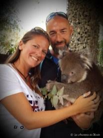 Faire un câlin à un koala en Australie