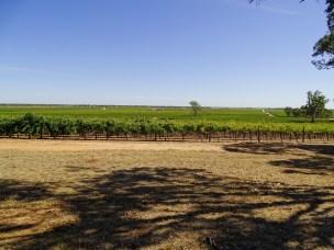 région viticole en Australie
