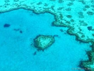Heart Reef - Australie