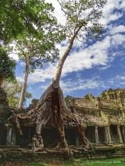 Temple de Preah Khan