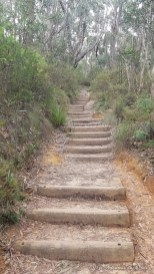 Chemin pour Bridal View Falls - Blue Mountains