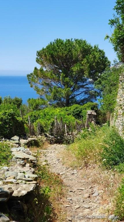 Chemin pour arriver à la plage de Nonza - Cap Corse