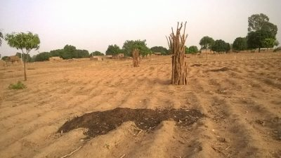 Photo 6 ads sahel 2016 amendement compost traditionnel