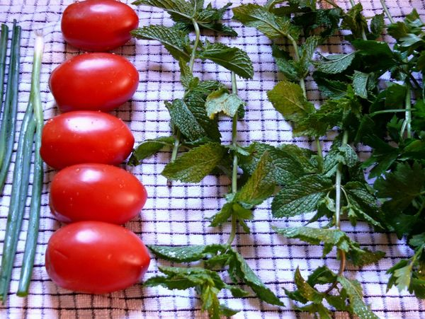 scallions, tomatoes, mint and parsley