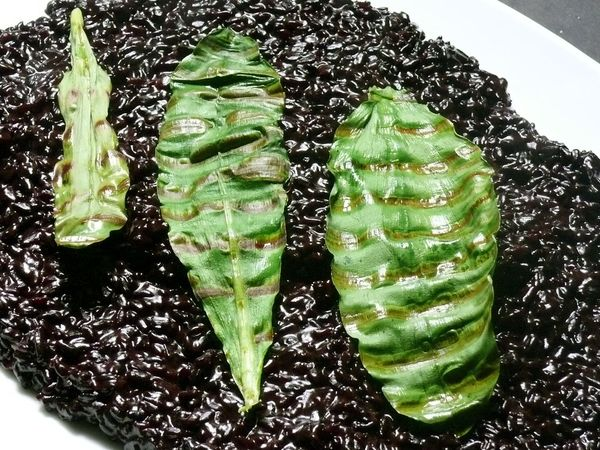 black rice and ramp risotto