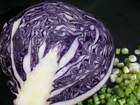 red cabbage and scallions
