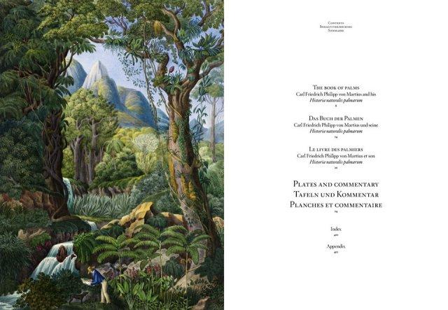 Von Martius en Amazonie